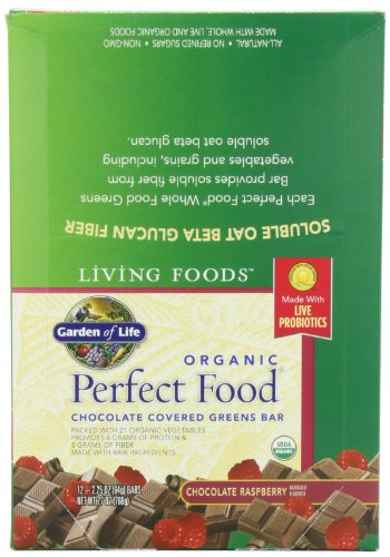 Garden Of Life Living Foods Organic Perfect Food Greens Bar Chocolate Raspberry Oz 12